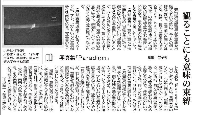 沖縄タイムス20160730『Paradigm』書評
